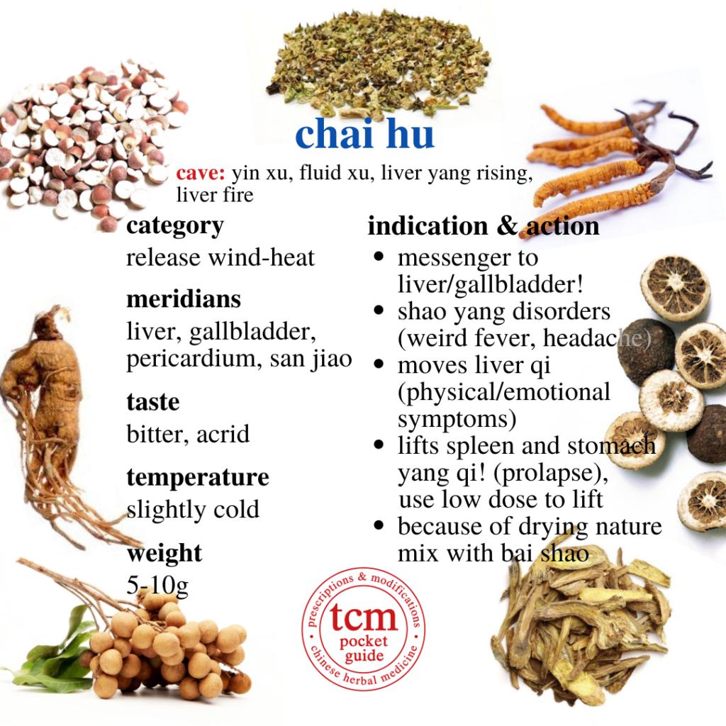 chai hu • radix bupleuri • thorowax root • 柴胡 - indication and action