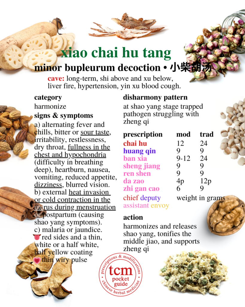 tcm pocketguide - xiao chai hu tang - bupleurum decoction - 小柴胡汤 - chinese herbal prescription - chinese medicine - tcm