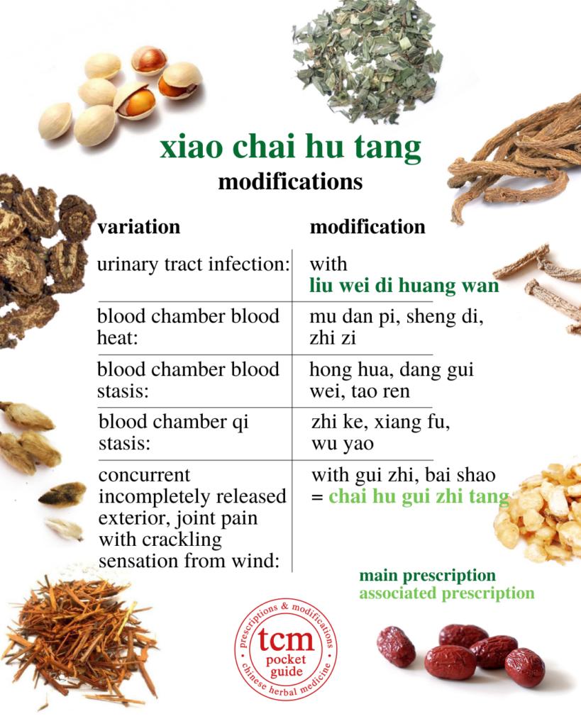 tcm pocketguide - xiao chai hu tang minor bupleurum decoction 小柴胡汤 chinese herbal prescription modifications