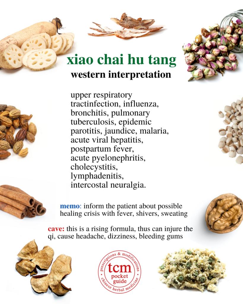 tcm pocketguide - xiao chai hu tang minor bupleurum decoction 小柴胡汤 chinese herbal prescription western interpretation