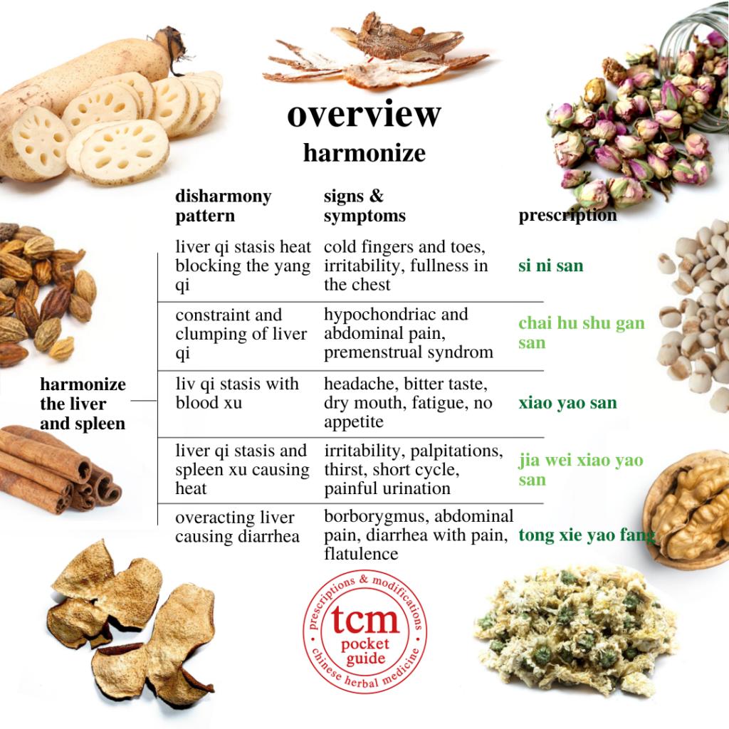 4th overview • harmonize - harmonize the liver and spleen